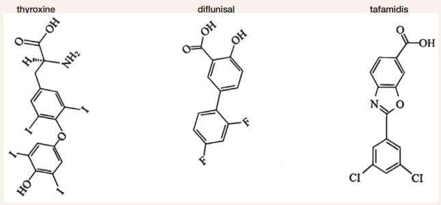 Thyroxine and Candidate Small Molecule Stabilizers
