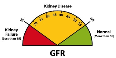 Explaining your kidney test results a tear off pad for clinical image of gfr result ccuart Gallery
