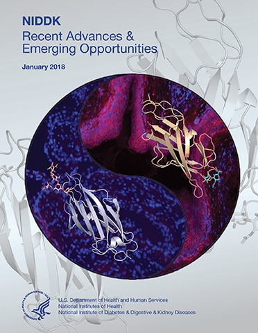 NIDDK Recent Advances and Emerging Opportunities 2018 Report Cover
