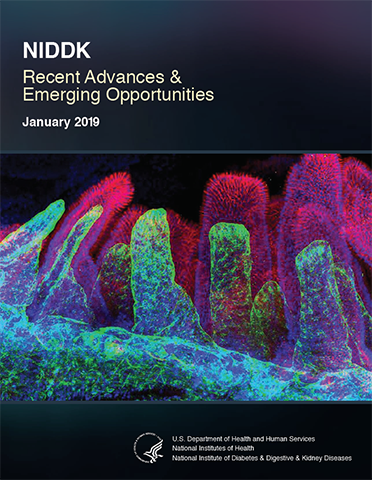 Cover for the NIDDK Recent Advances & Emering Opportunities 2019 document