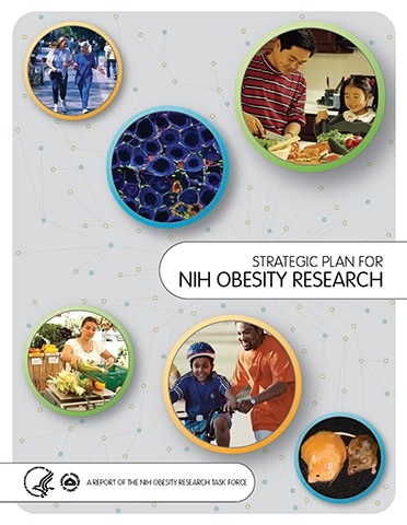 Strategic Plan for NIH Obesity Research 2011 cover