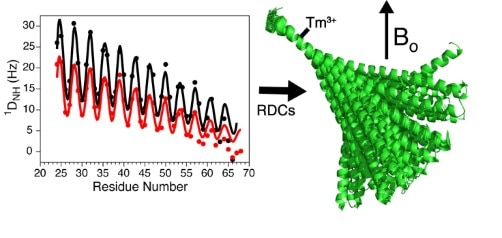 Measurement of residual dipolar couplings yield a view of the structural ensemble sampled by single alpha-helical domains