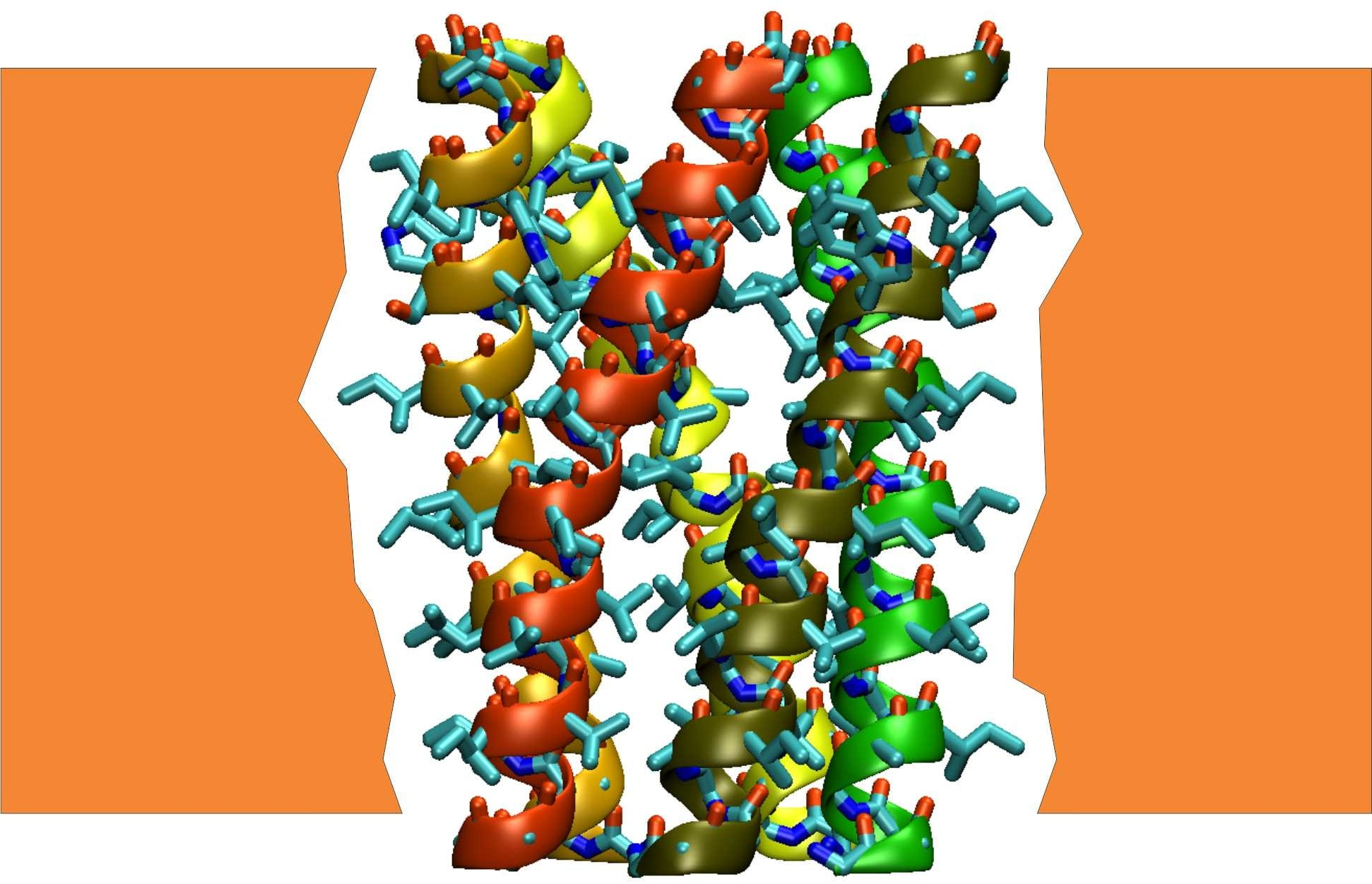 Structural model for a pentameric assembly of transmembrane segments of the HIV-1 Vpu protein