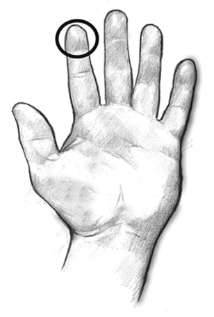 Drawing of an open hand with a circle drawn around the tip of the index finger to show what a serving size of 1 teaspoon looks like.