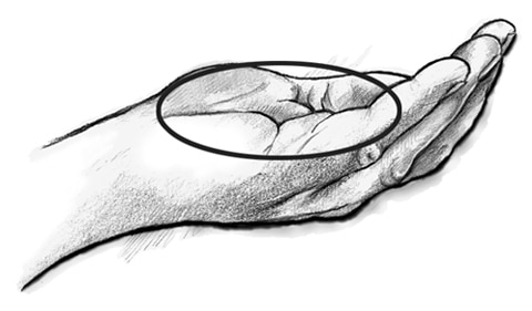 Drawing of an open hand that is cupped with a circle drawn around the palm to show what a serving size of 1 ounce looks like.