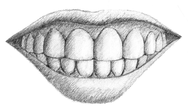 Drawing of a mouth with the teeth and gums.