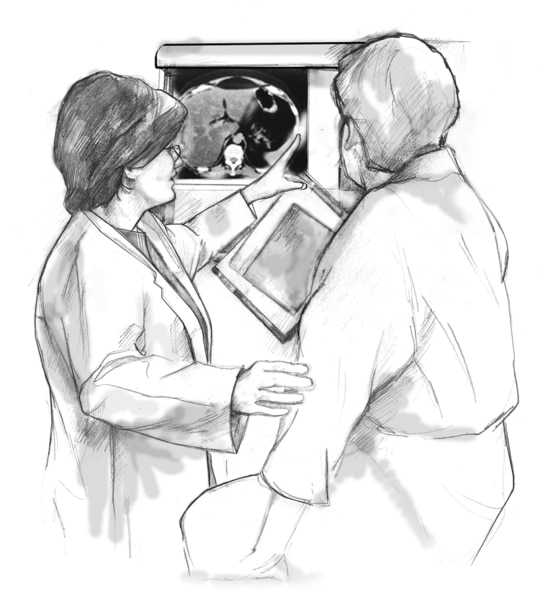 Drawing of a female doctor directing a female patient to look at a specific detail in an x ray displayed on the wall.