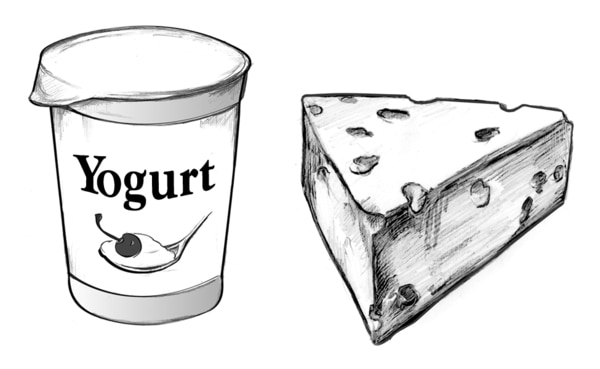 Drawing of a container of yogurt and a wedge of Swiss cheese.